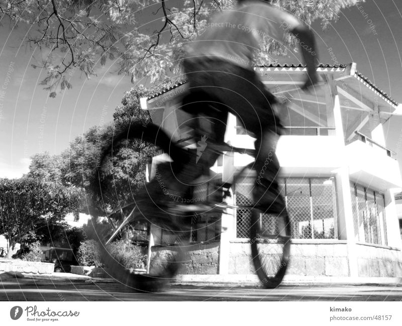 biker Child Sky Bicycle Kid (Goat) Places Tree place Black & white photo Mexico kimako Black and white