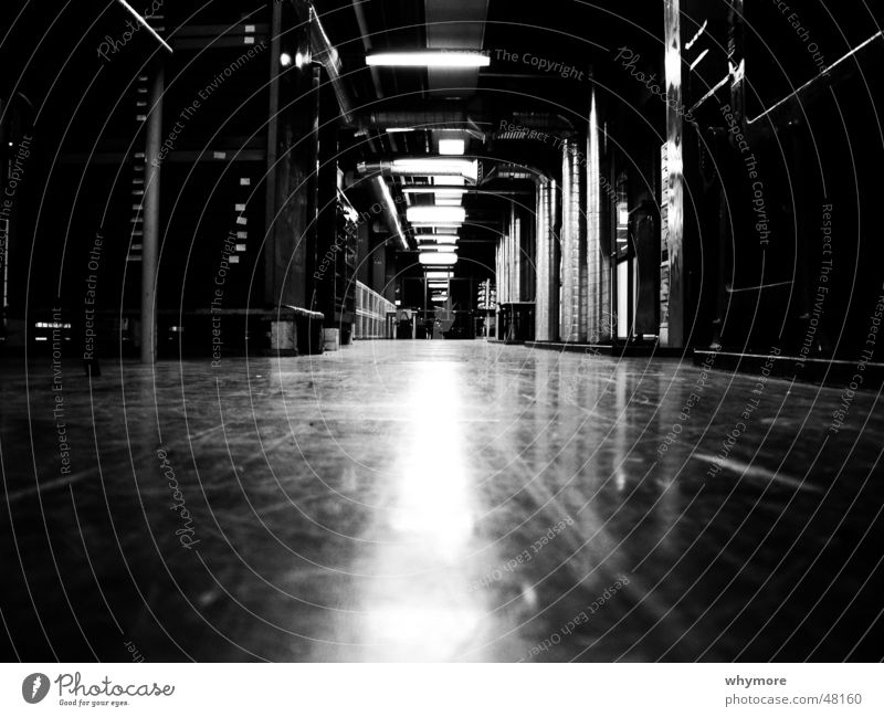 White Black Lamp Room Art Academic studies Floor covering Long Deep Hallway Smoothness Parquet floor Netherlands