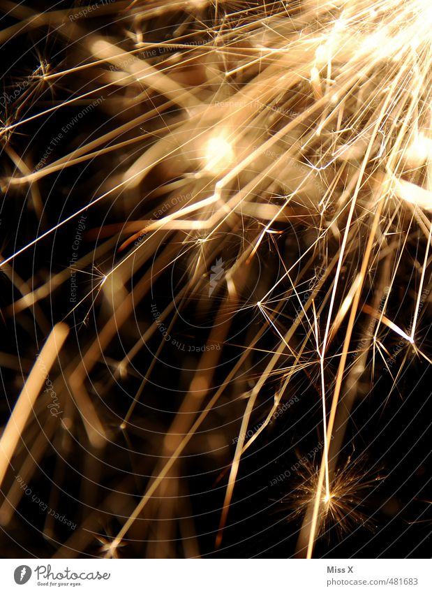New Year's Eve Feasts & Celebrations Glittering Sparkler Firecracker New Year's Party Explosion Star (Symbol) Gold Colour photo Close-up Deserted