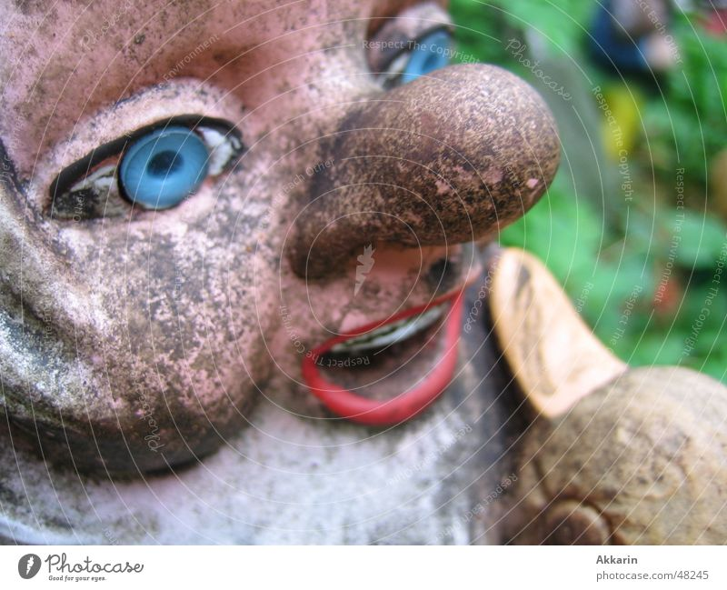 Autumn Garden Dwarf Garden gnome