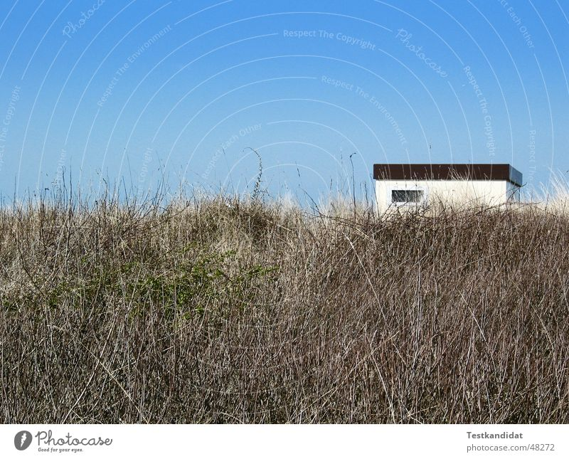 White Blue Beach House (Residential Structure) Window Landscape Beach dune Beautiful weather Blue sky