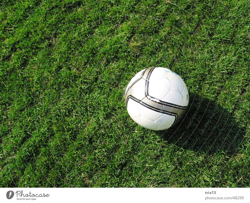 soccer Football pitch Meadow Round Line Green Striped White Soccer Lawn Ball Shadow Floor covering Sports Calm Crazy