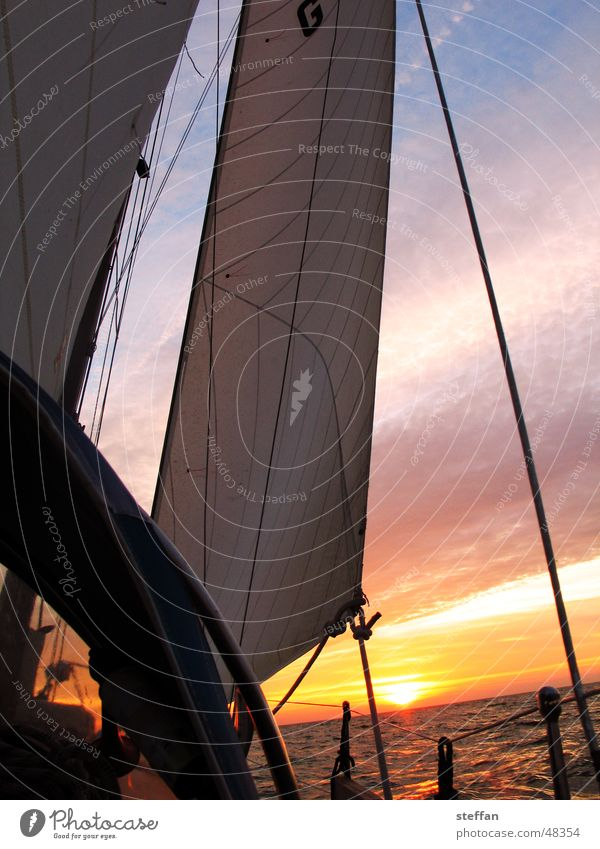 sail at night Sailing Ocean Ijsselmeer Netherlands Evening sun Sky Sports Sun