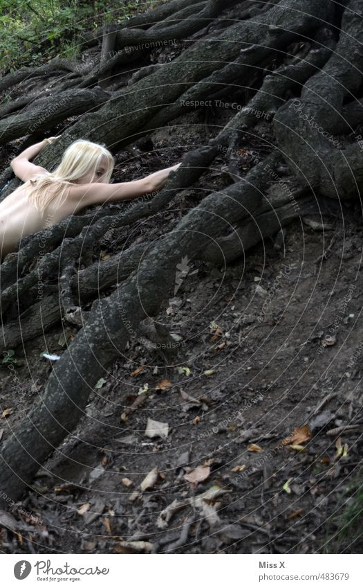 Human being Youth (Young adults) Naked Tree Forest 18 - 30 years Adults Dark Female nude Emotions Feminine Death Lie Moody Fear Blonde