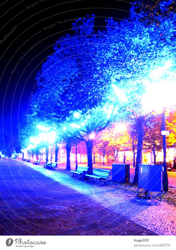 Tree Blue Red Leaf Street Berlin Lighting Bench Neon light Eerie Glow Spooky Unter den Linden