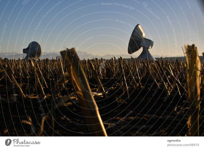 earth to all... Satellite Satellite dish Radio telescope Raisting Bavaria Radio technology Maize field Corn stubble Stopper Harvest Exterior shot Germany