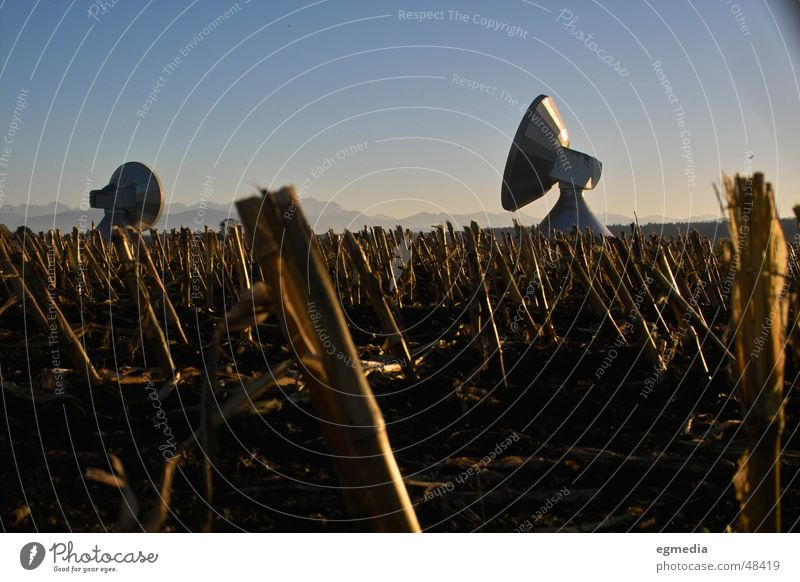 Nature Landscape Far-off places Freedom Germany Harvest Bavaria Antenna Stopper Satellite dish Radio technology Astronautics Maize field Radio telescope