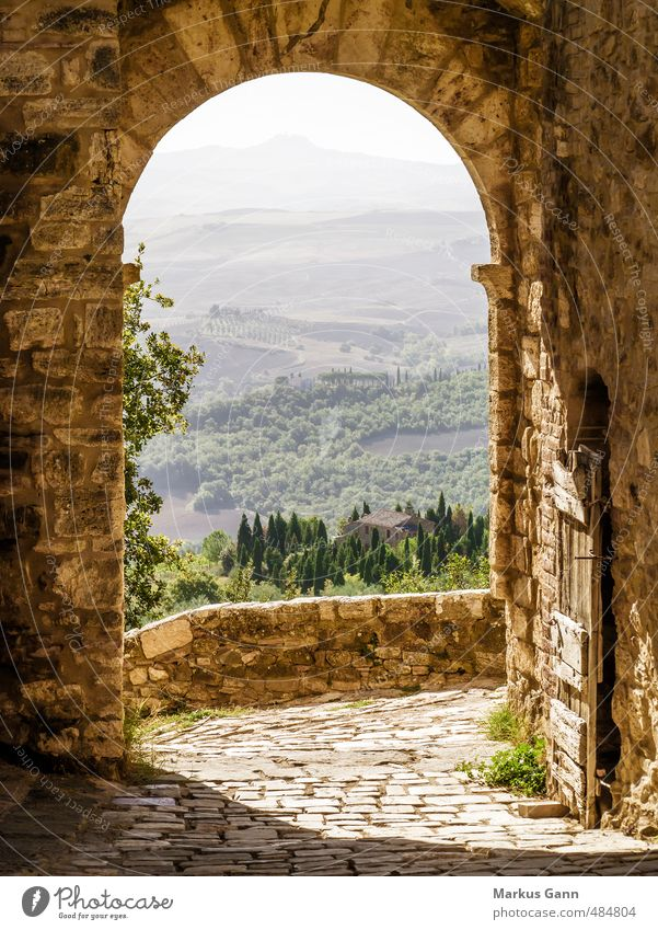Tuscany Vacation & Travel Summer Summer vacation Nature Brown Moody Pienza Italy Archway Old Wall (barrier) Cypress Ochre Lanes & trails Gate Haze Colour photo