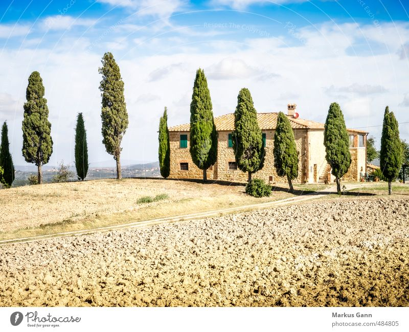 Landscape in Tuscany Vacation & Travel Tourism Summer Summer vacation House (Residential Structure) Nature Sky Beautiful weather Plant Tree Foliage plant