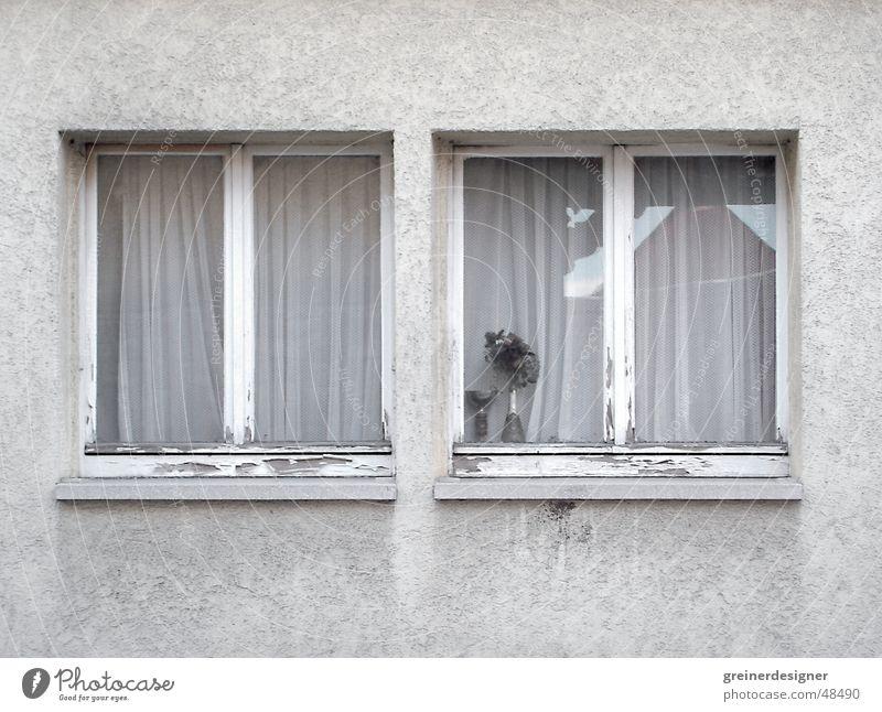 Window Sadness Arm Grief Gloomy Village Shabby Neighbor Window board Province Part of a building