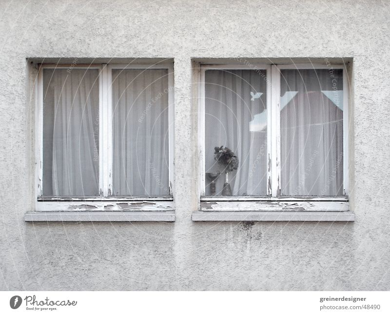 windows Gloomy Neighbor Window Part of a building Window board Village Grief Province Arm Shabby dirty facade in the country Sadness