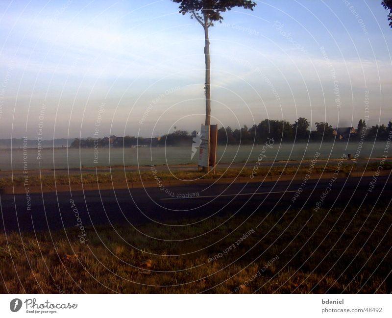Fog Moenchengladbach