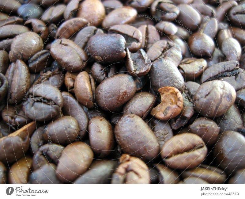 coffee beans Black Brown Café Hot drink Beans Sense of taste Relaxation Caffeine Serene Coffee Odor Aromatic brown pearls roasting Joy