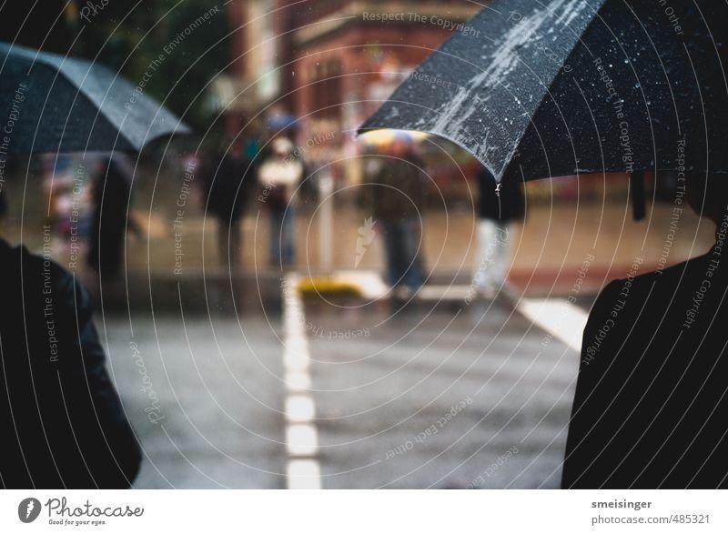 Human being City Water Black Cold Street Autumn Rain Weather Wait Wet Drops of water Hamburg Umbrella Downtown Boredom