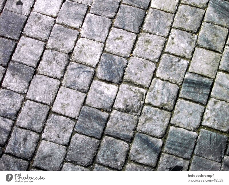 Old Street Lanes & trails Cobblestones Square Paving stone Prague Czech Republic Jolting