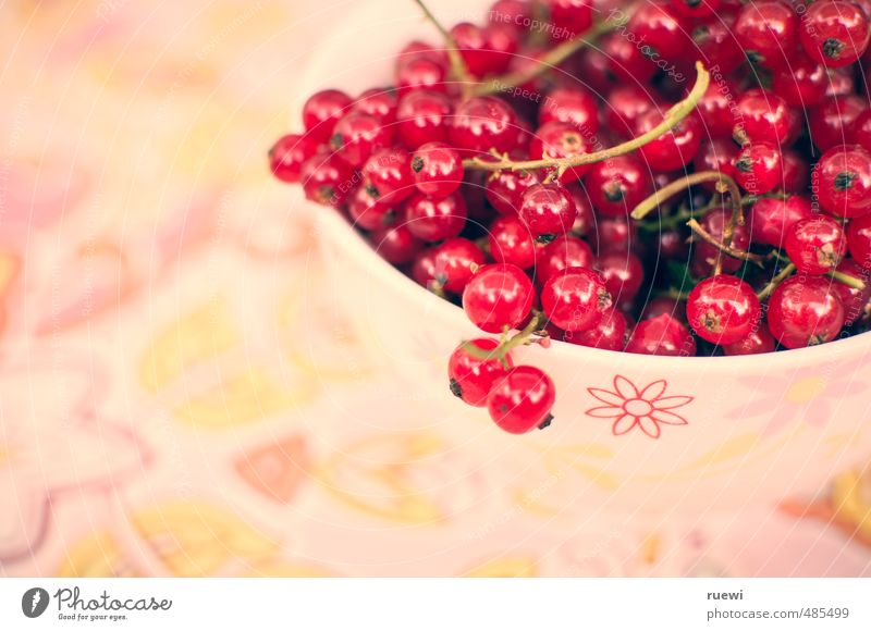 currants Food Fruit Redcurrant Nutrition Organic produce Vegetarian diet Diet Finger food Candy Crockery Bowl Healthy Healthy Eating Fitness Life Nature Summer