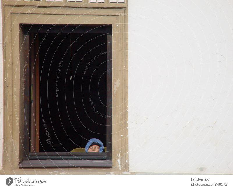 hibernation in haslach Vantage point Woman Senior citizen Haslach Federal State of Upper Austria Window Brown Sleep Sun Cold Winter Window frame Facade