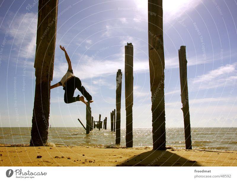 Sky Nature Water Vacation & Travel Sun Ocean Summer Beach Joy Warmth Coast Sand Jump Style Bird Flying