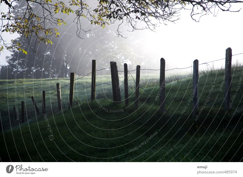 Nature Green Landscape Cold Environment Meadow Autumn Natural Field Fence Fence post