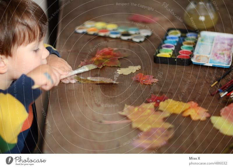 Human being Child Leaf Autumn Playing Leisure and hobbies Infancy Table Cute Creativity Painting (action, artwork) Concentrate Toddler Autumn leaves Maple leaf Paintbrush