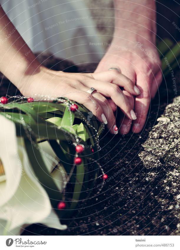 touched Couple Partner Hand Fingers Happy Joie de vivre (Vitality) Married couple Matrimony Wedding Circle Wedding band Bouquet wedding bouquet Touch To enjoy