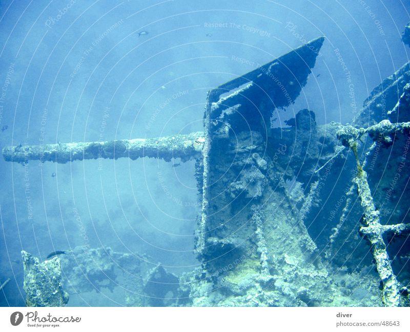 Gun of the Thistlegorm Cannon Watercraft Dive Navy War Wreck Underwater photo Red Sea diving world war 2