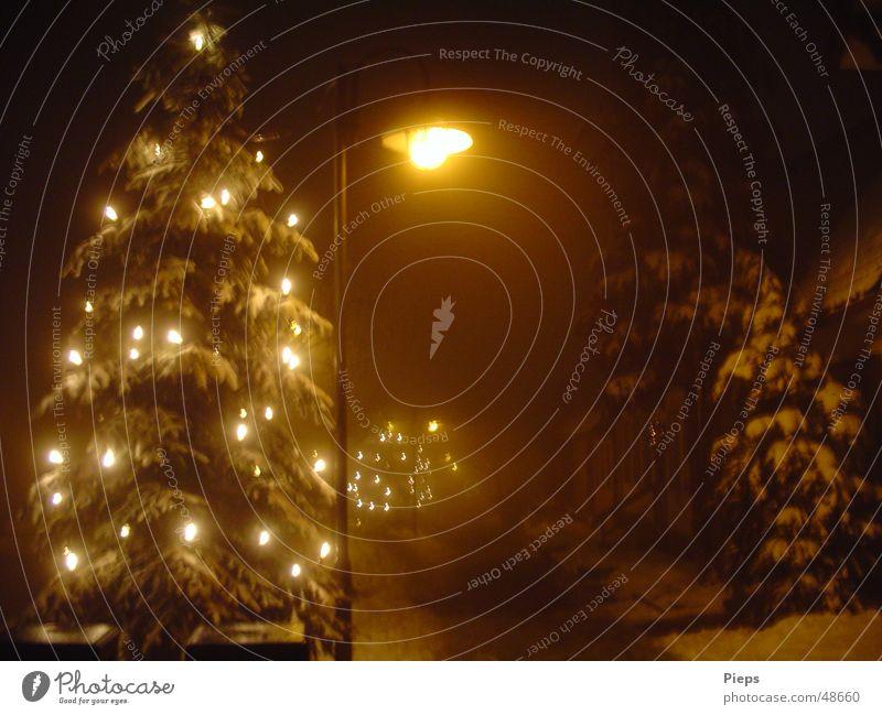 Christmas & Advent Winter Calm Street Dark Snow Fog Illuminate Christmas tree Lantern Freeze Alley December Purity Spooky Town