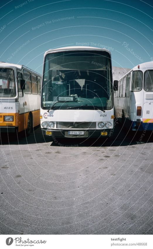 bus Bus terminal Portugal Summer Tar Motor vehicle Sky buses Train station Sun Floor covering Blue Beautiful weather