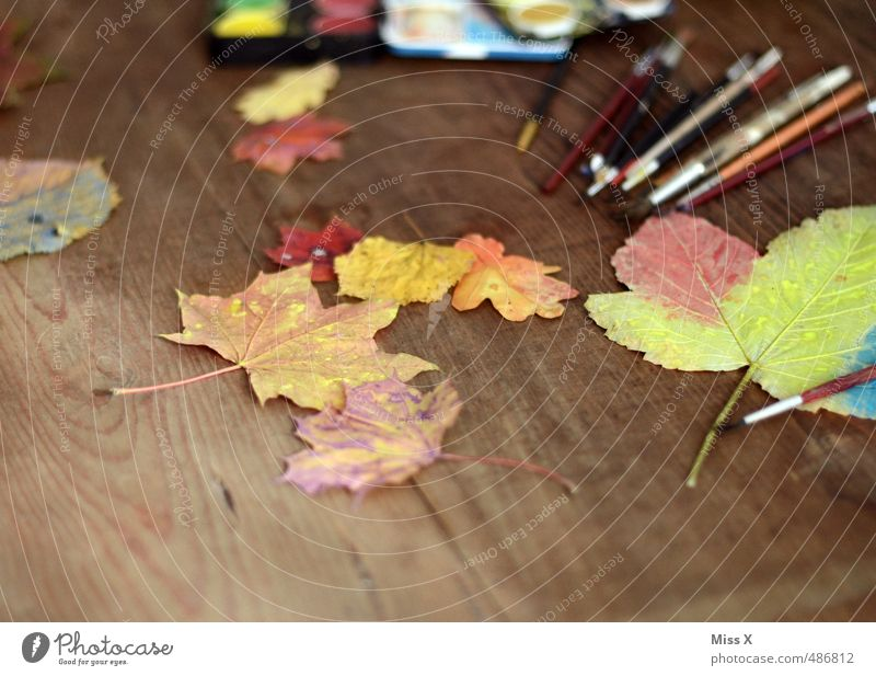 autumn colouring Leisure and hobbies Playing Handicraft Children's game Work of art Autumn Leaf Multicoloured Colour Joy Painting (action, artwork) Maple leaf