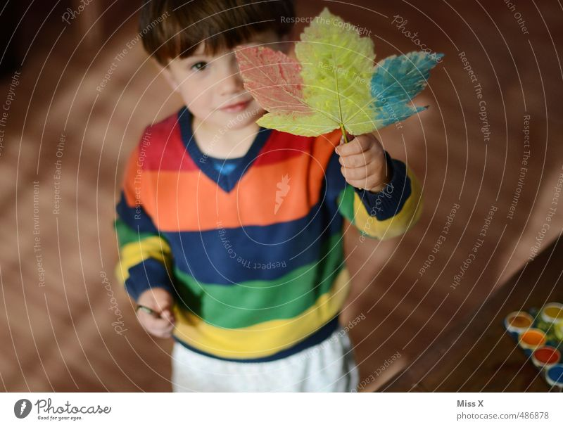 Human being Child Colour Leaf Autumn Playing Leisure and hobbies Infancy Cute Creativity Painting (action, artwork) Toddler Autumn leaves Maple leaf Striped