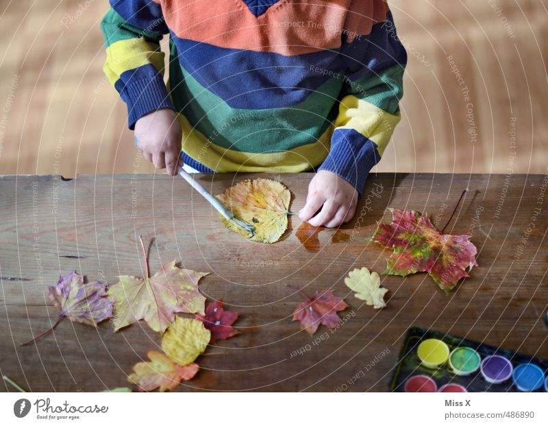 Human being Child Colour Joy Leaf Emotions Autumn Dye Playing Moody Leisure and hobbies Infancy Creativity Painting (action, artwork) Toddler Autumn leaves