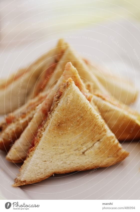 Eating Brown Food Nutrition Bread Snack Toast Finger food Tuna fish Coated