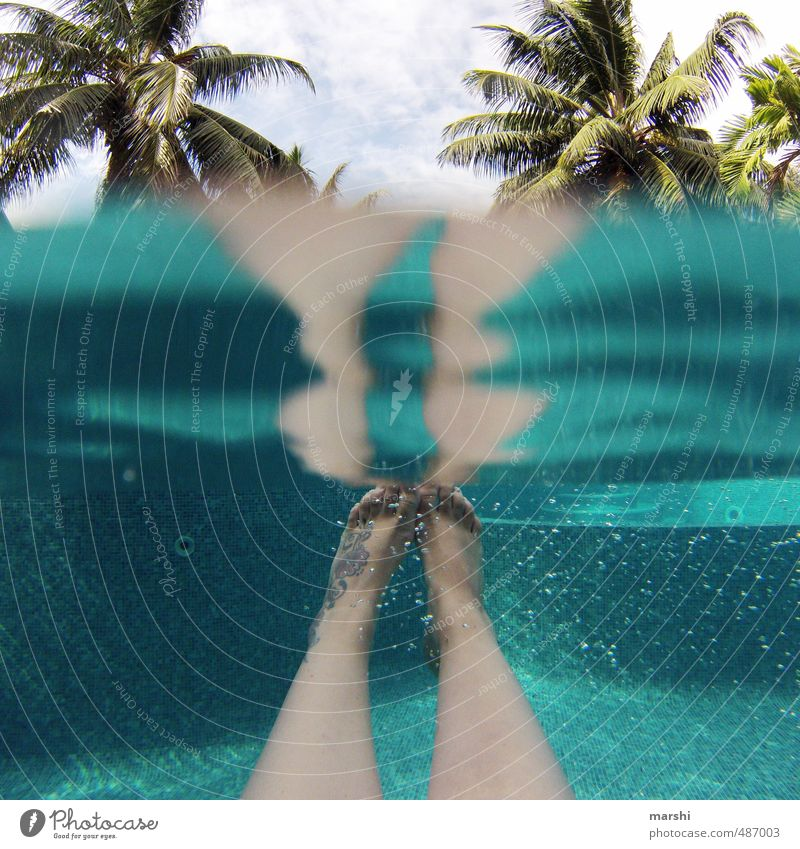 Vacation & Travel Blue Sports Swimming & Bathing Above Legs Feet Leisure and hobbies Tattoo Swimming pool Under Irritation Palm tree Waterfall Aquatics