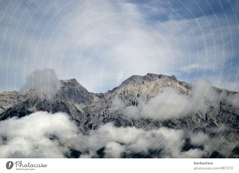 Packed in cotton wool Environment Nature Landscape Elements Sky Clouds Alps Mountain Peak Tall Experience Climate Far-off places Colour photo Exterior shot