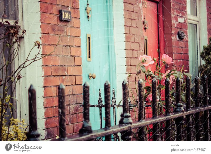 roses Lifestyle Living or residing House (Residential Structure) Garden Flower Rose Wall (barrier) Wall (building) Door Simple Cheap Town Pink