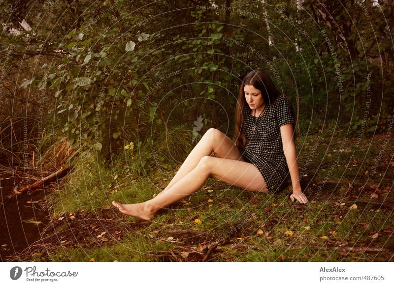 Nature Youth (Young adults) Beautiful Tree Young woman Calm Forest 18 - 30 years Adults Eroticism Emotions Grass Legs Sit Bushes Trip