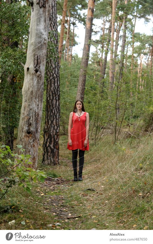 Little Red Riding Hood or Rumpelstiltskin? Playing Trip Young woman Youth (Young adults) Body 18 - 30 years Adults Nature Tree Bushes Forest Lanes & trails