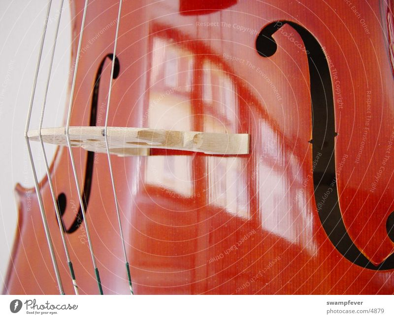 Music Wood Leisure and hobbies Steel Footbridge Musical instrument Musical instrument string Orchestra Musician Cello
