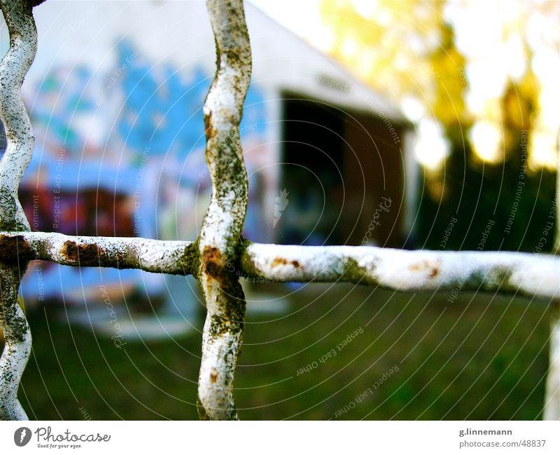 Nature Tree Green Blue Yellow Autumn Graffiti Waves Wind Closed Lawn Gate Rust Fence