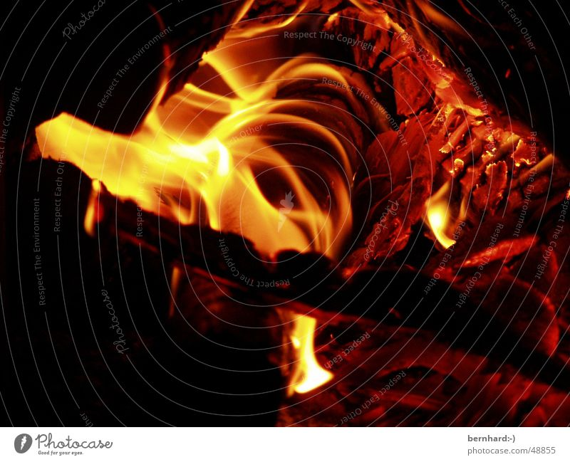 it burns Wood Heat Burn Blaze Physics Energy industry Warmth hot