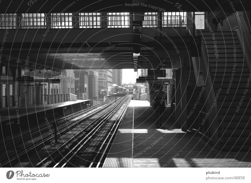 The Loop - Chicago Railroad Commuter trains Black White Platform Town Endurance Underground trams Black & white photo track Wait Patient
