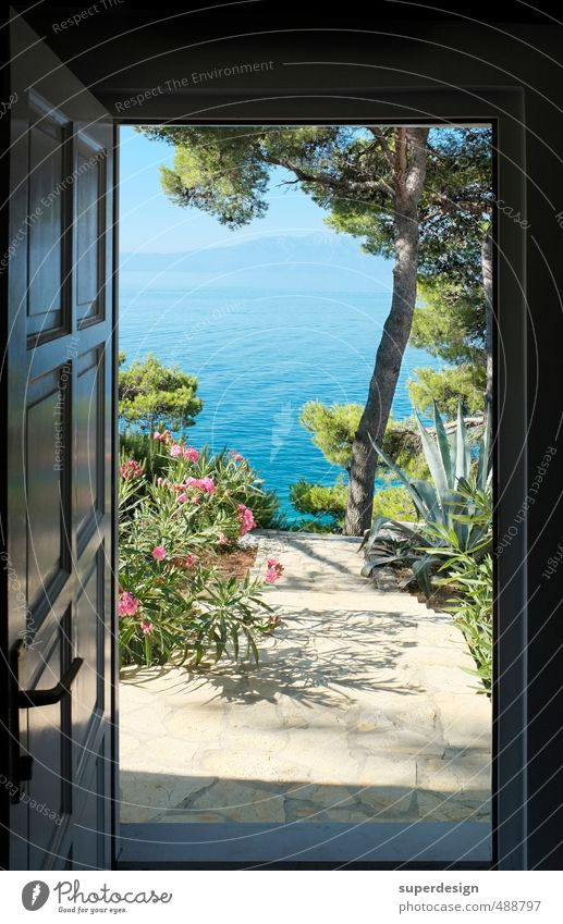 beautiful views Vacation & Travel Freedom Summer Summer vacation Sun Ocean House (Residential Structure) Garden Nature Landscape Plant Animal Water