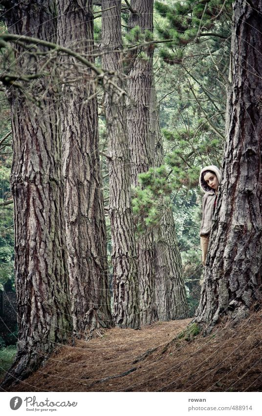 Hidden Human being Feminine Young woman Youth (Young adults) Woman Adults Environment Landscape Tree Forest Safety Protection Dangerous Stress Loneliness