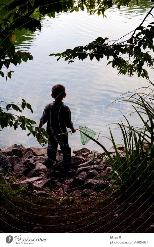 Human being Child Tree Forest Emotions Boy (child) Playing Coast Lake Moody Masculine Leisure and hobbies Waves Infancy Trip Adventure
