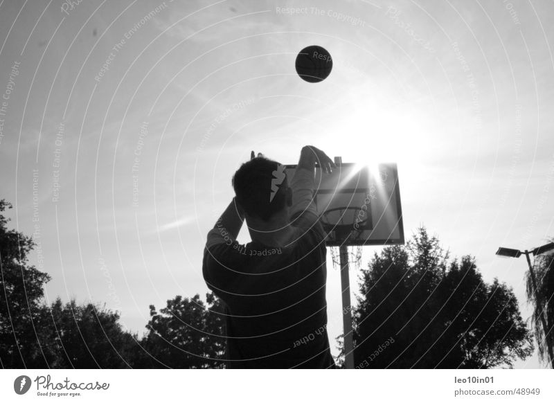 streetball Basket Summer Ball sports Basketball Sun Black & white photo Sports Throw
