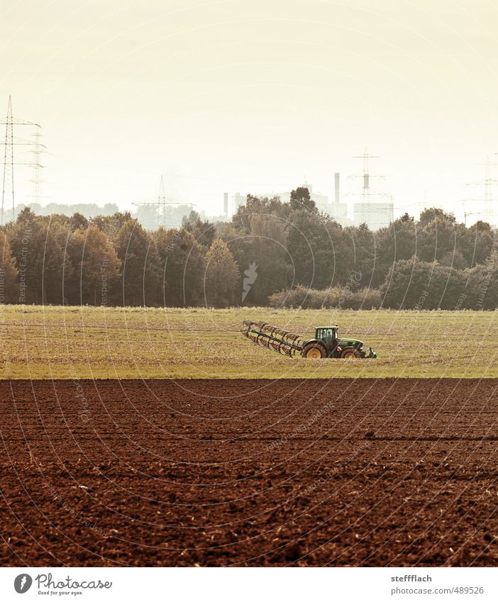 Country Economy Environment Landscape Earth Sky Autumn Climate change Field Forest Deserted Tractor Sand Work and employment Dirty Brown Horizon Transience