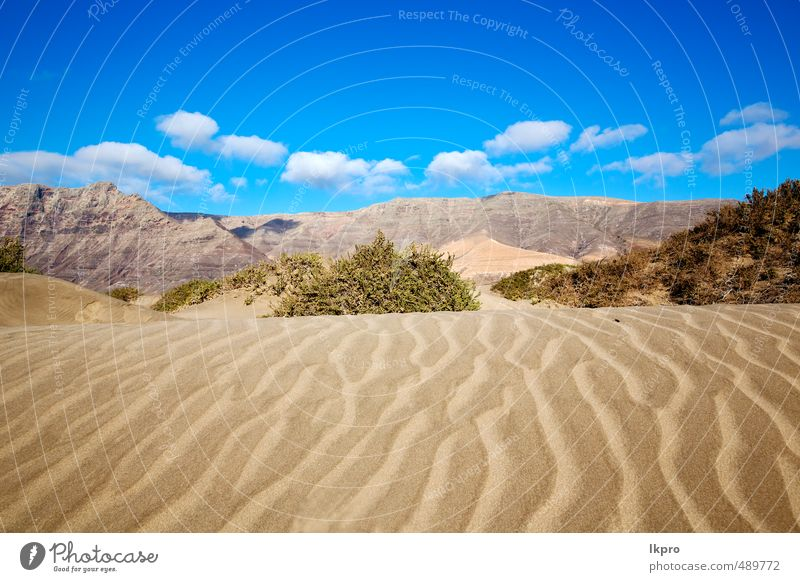 yellow dune beach hil and mountain in the Sky Nature Vacation & Travel Plant Summer Relaxation Landscape Clouds Beach Mountain Yellow Coast Stone Rock Sand Tourism