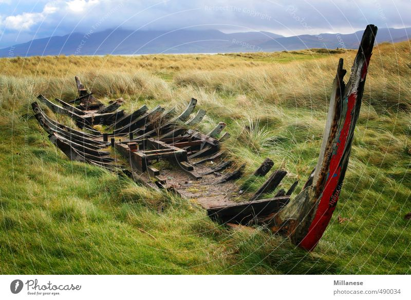 shipwreck Environment Nature Landscape Meadow Broken Wreck Ireland Colour photo Exterior shot