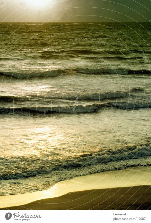Golden Lake Ocean Sunset Glass technology Beach Atlantic Ocean Waves Portugal Water sea reflection wave