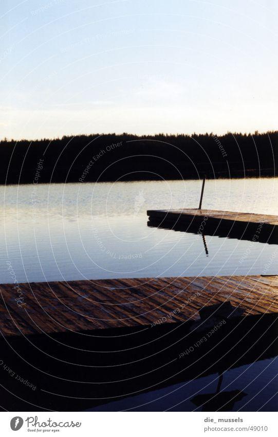 Which way? Footbridge Lake Ocean Forest Sunset Horizon Water Blue